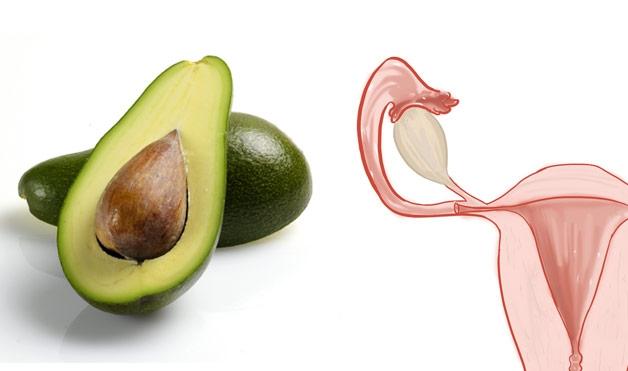 Sự tương đồng giũa các bộ phận cơ thể và thực phẩm bổ dưỡng