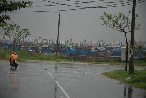 Ở các Âu thuyền, cửa biển, mưa đang rất to kèm theo gió lớn