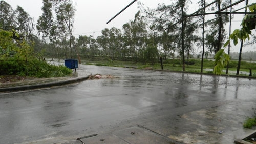 Tại thành phố Tam Kỳ mưa nhỏ kèm gió nhẹ từ sáng sớm nay