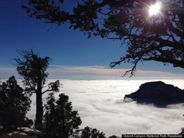 Ngắm sương mù mờ ảo tại dãy Grand Canyon