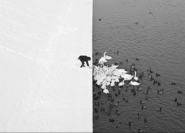 Những bức ảnh thiên nhiên đẹp nhất năm 2013