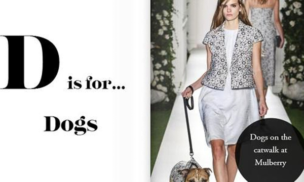Động vật luôn là nguồn cảm hứng vô tận trong thời trang. Những chú chó giờ đây thậm chí còn đóng vai trò người mẫu trong nhiều bộ hình cũng như trên sàn catwalk. Giới chuyên gia dự đoán, xu hướng dùng động vật như chó, mèo làm người mẫu sẽ còn gia tăng trong thời gian tới.
