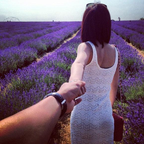 Cánh đồng hoa oải hương ngút ngàn ở Mayfield Lavender, Surrey (cách trung tâm London 15 dặm).