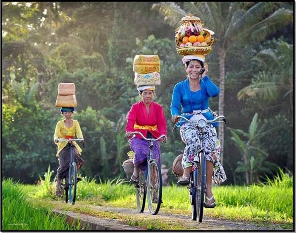 Đội hàng hóa đi xe đạp đã khó chứ nói chi thêm nghe cả điện thoại!