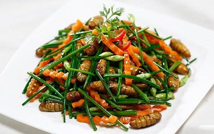 Ăn côn trùng rất bổ - Bạn có tin không?