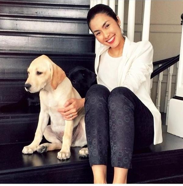 Tăng Thanh Hà thích thú bên chú chó của mình.