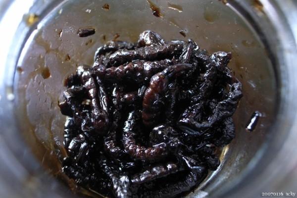 Những món ăn độc nhất vô nhị của người Nhật