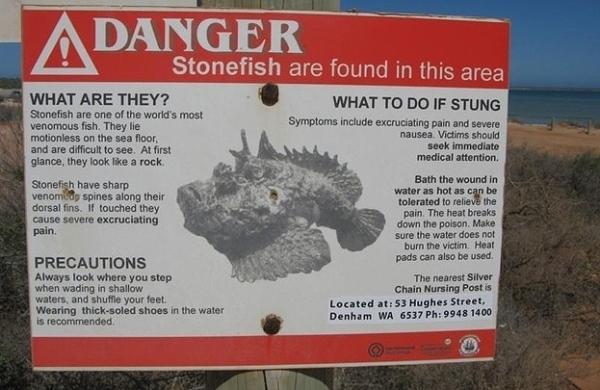 Rợn người những hình ảnh kinh hoàng ở Úc