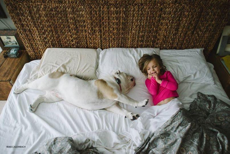 Thích thú với đôi bạn thân em bé và thú cưng siêu đáng yêu