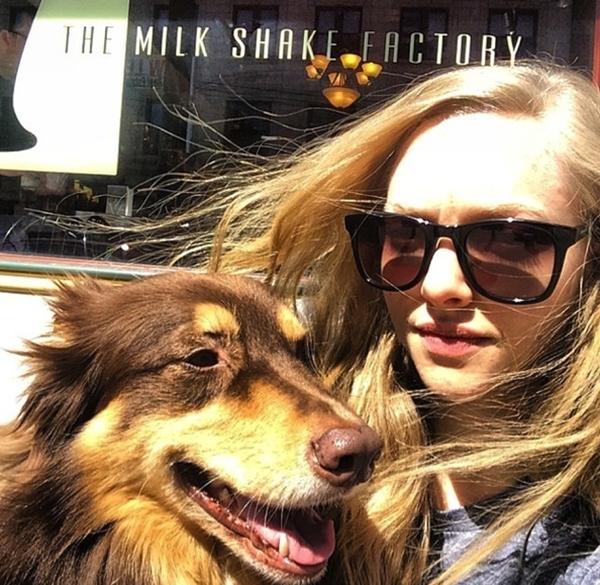 Amanda Seyfried đang có chuyến dạo chơi cùng chú chó cưng của mình.