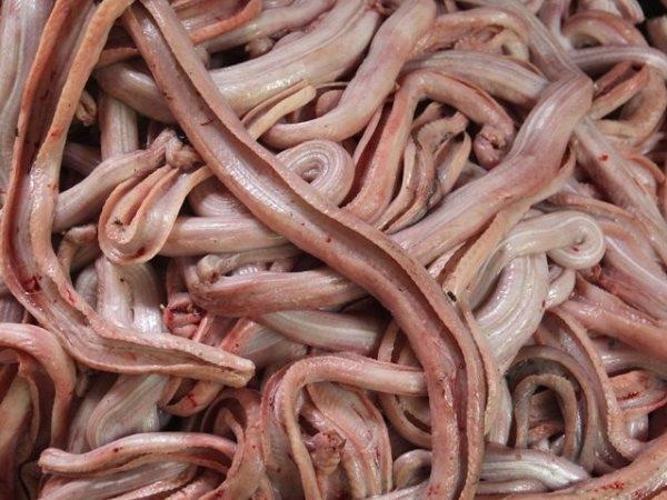 Đây là phần thịt rắn được phân loại riêng và xử lý với các phương pháp thích hợp.