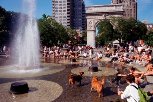 8 điều thú vị về New York mà ngay cả người dân ở đó cũng không biết