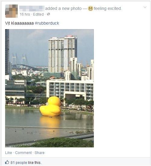 Chú vịt khổng lồ gây sốt cộng đồng mạng khi đến Việt Nam
