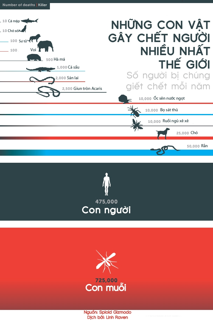 [Infographic] Con vật nào gây chết người nhiều nhất?