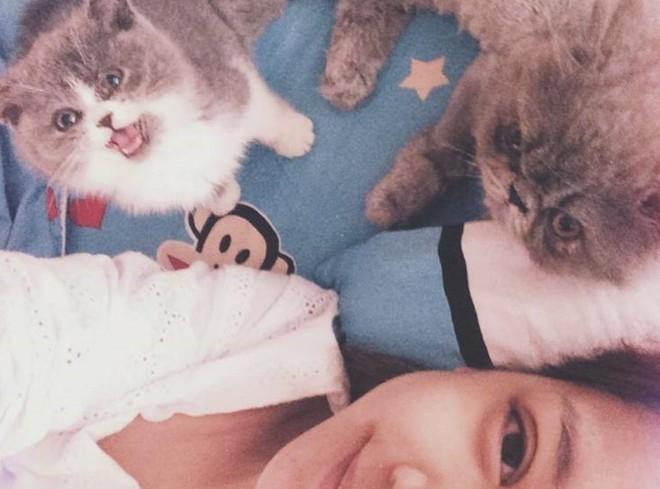 Sáng 30/4, Chi Pu chia sẻ hình ảnh chụp cùng mèo cưng, trước khi ngày lễ tưng bừng diễn ra. - Tin sao Viet - Tin tuc sao Viet - Scandal sao Viet - Tin tuc cua Sao - Tin cua Sao