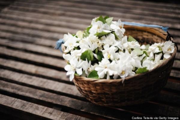 [Bạn biết chưa] Sống khỏe đẹp mỗi ngày nhờ hương thơm kỳ diệu của các loài thực vật