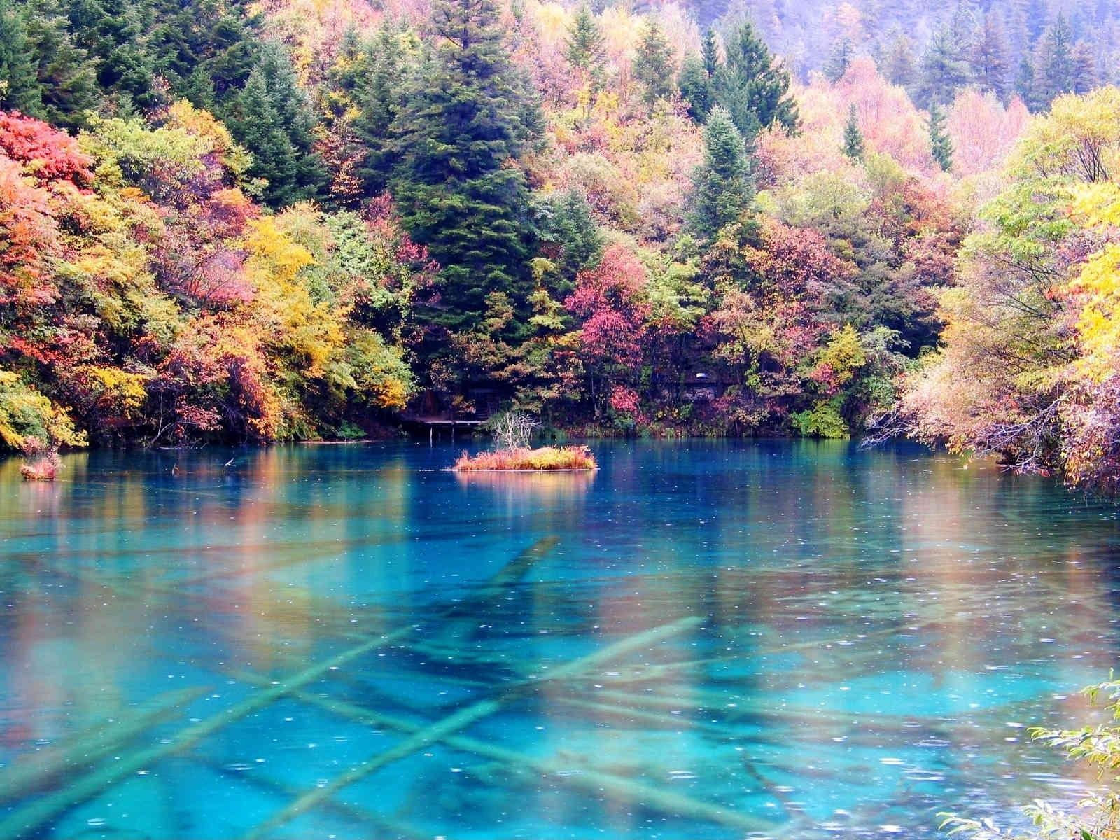 Hồ Ngũ Hoa