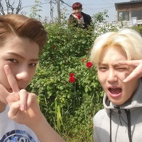 Sehun khoe hình chụp cùng Chanyeol và Suho bên hoa hồng