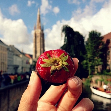Dâu tây chocolate, thị trấn Brugge, Bỉ