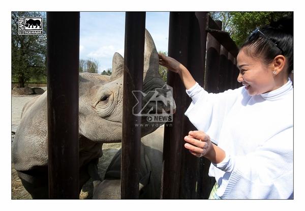 """Qua chuyến đi này, Thu Minh cũng chia sẻ điều cô đã học được: """"Ở thiên nhiên hoang dã, các loài thú luôn được tôn trọng ở mức cao nhất"""""""