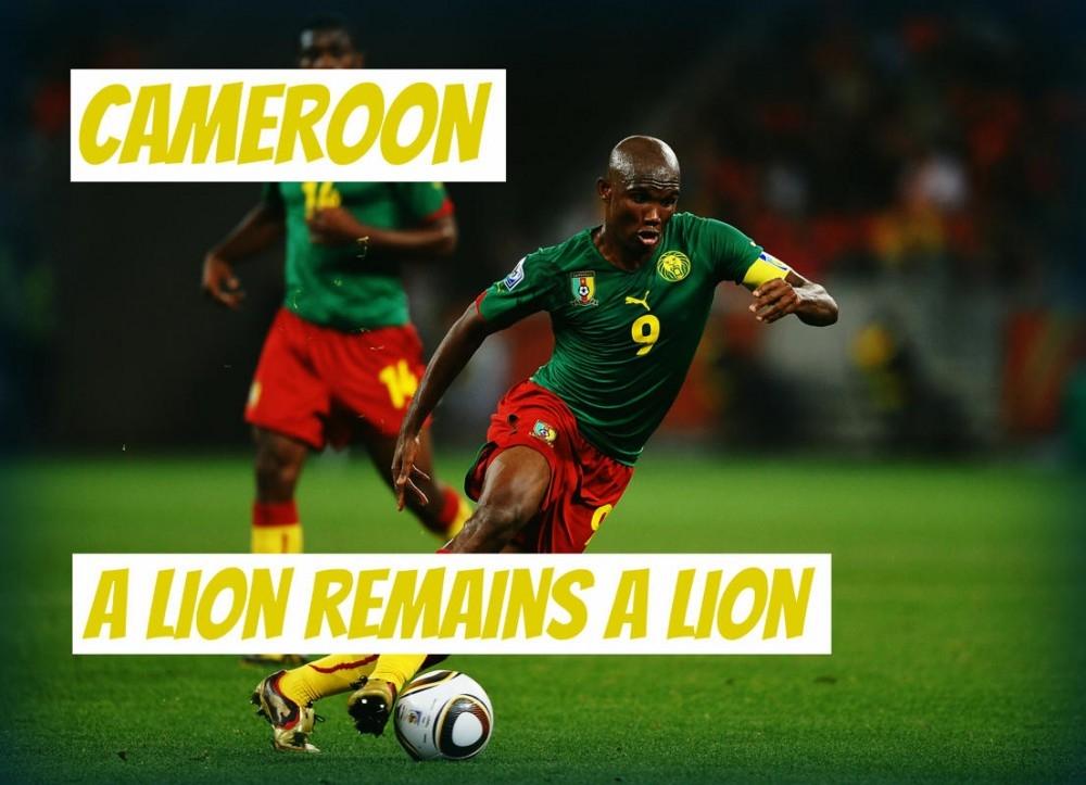 Sư tử vẫn mãi là Sư tử!