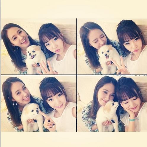Yuri khoe hình cùng Tiffany tạo dáng với chú cún cực đáng yêu