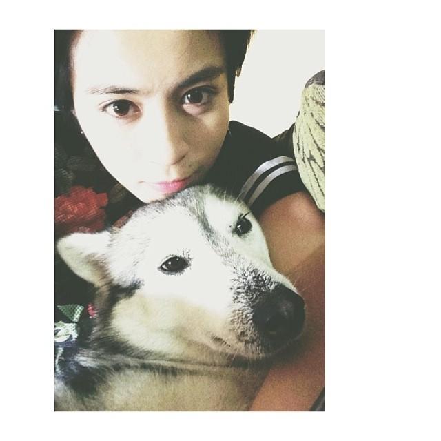 Gil Lê tự kỷ ôm cún cưng, những ai là fan của Gil đều biết chú chó đáng yêu này là hoàng tử nhà hủ tiếu. Một số fan còn tiết lộ, đôi khi ghé nhà Gil không phải để tìm cớ gặp Gil mà thật ra là muốn...nựng chú chó này.