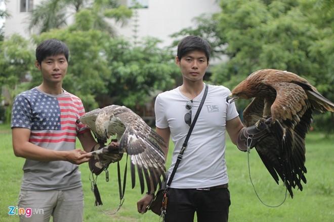 Vốn mê nuôi chim từ thời tiểu học, sau khi thử nuôi nhiều loài chim hót, hai anh em song sinh Nguyễn Việt Anh (trái) và Nguyễn Nhật Anh (1991), sống tại TP.HCM đã chuyển sang nuôi loài chim săn mồi như chim cắt, chim ưng... Đến năm 2012, cả hai nuôi chim đại bàng