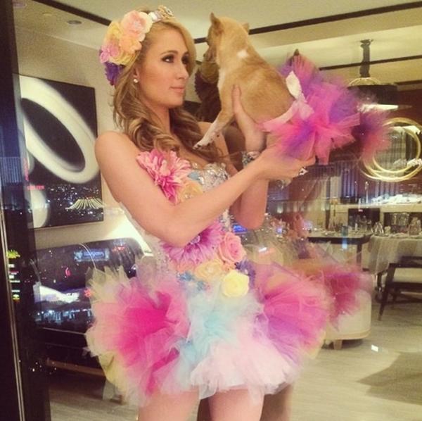 Paris Hilton đã mặc cho chú chó của mình một bộ váy giống y như trang phục mà cô đang mặc trên người.