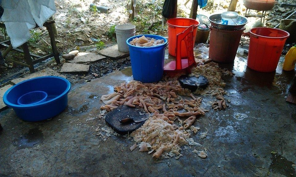 Thanh Hóa: Du khách vạch trần chế biến nem chua giữa sàn nhà