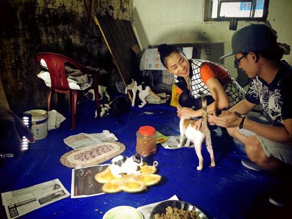 """Ngoài tình yêu với tê giác, nữ ca sĩ Thu Minh còn quan tâm đến những động vật khác, gần gũi hơn với con người như mèo, chó. Cô chia sẻ: """"Hãy cùng ủng hộ và trân trọng những tấm lòng nhân ái với Chó Mèo - Để bảo vệ những người bạn của chúng ta nhé cả nhà..Love you"""""""
