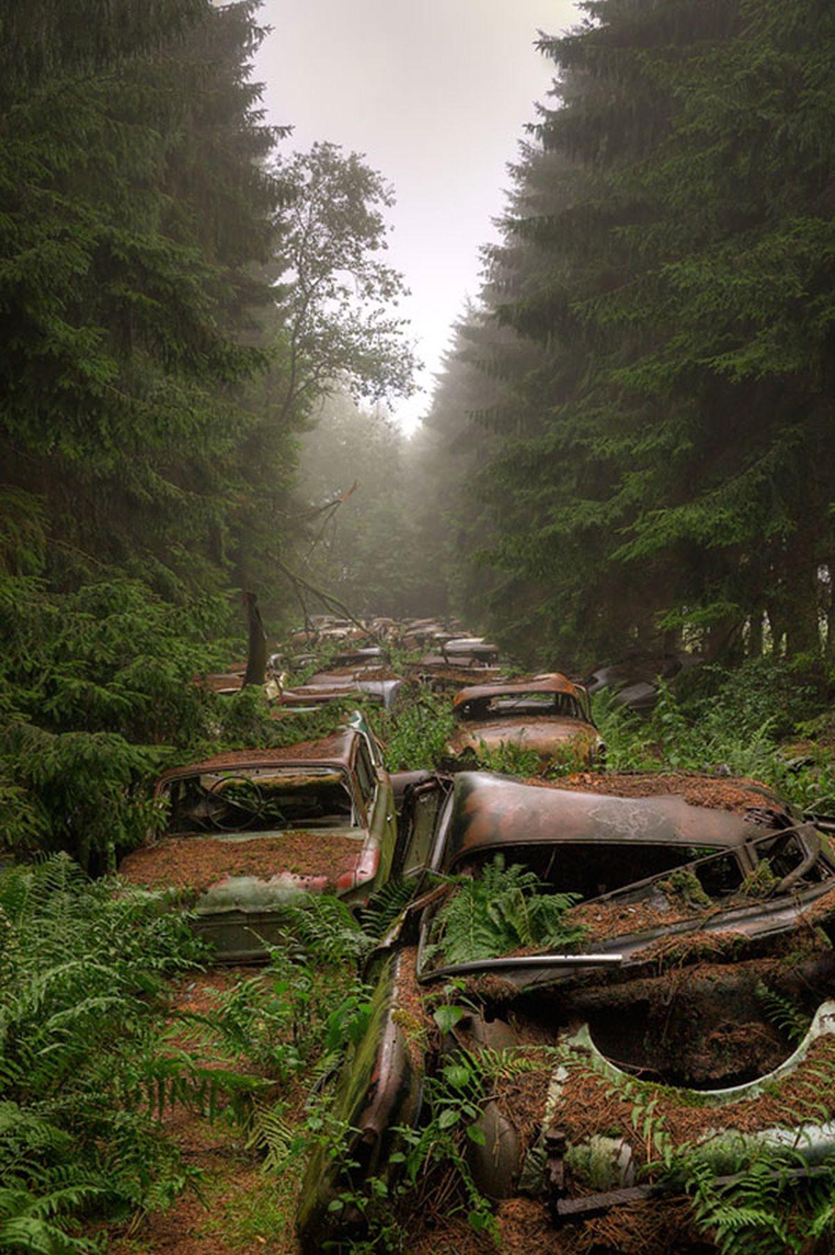 """Có đến bốn khu """"Nghĩa địa xe hơi"""" tại Chatillon, với hơn 500 chiếc xe cổ"""