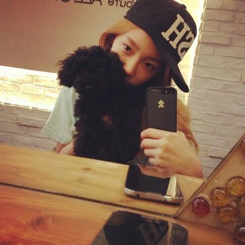 Taeyeon luôn tình cảm với chú chó Ginger của mình