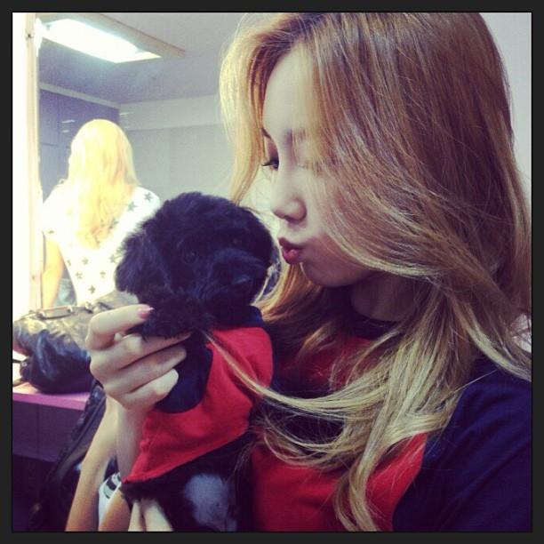 Ghen tỵ với những khoảnh khắc tình cảm của sao Hàn và thú cưng