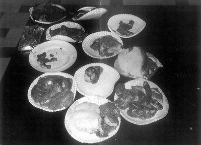 Câu chuyện về kẻ ăn thịt bạn gái: Issei Sagawa