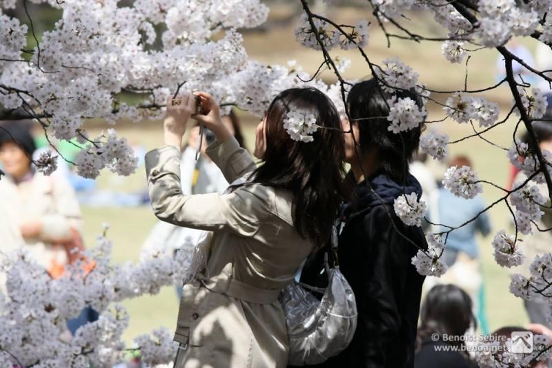 Bạn đã biết những thông tin thú vị về Nhật Bản ?