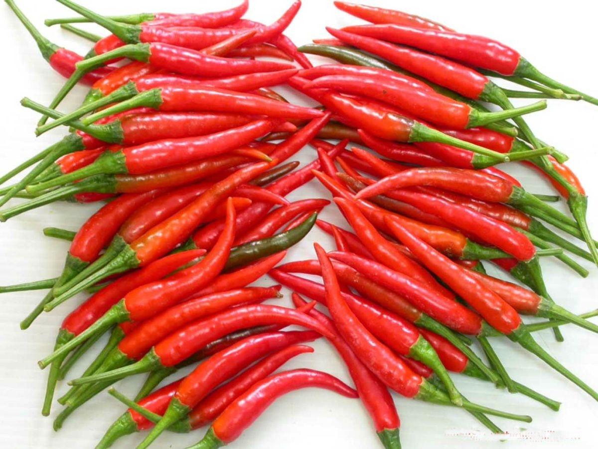 [Sống khỏe] 10 đối tượng nên tuyệt đối kiêng kị ăn ớt