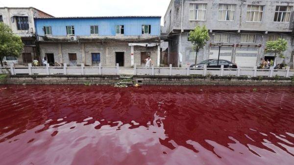Hãi hùng dòng sông Trung Quốc hóa màu máu người chỉ sau 1 đêm
