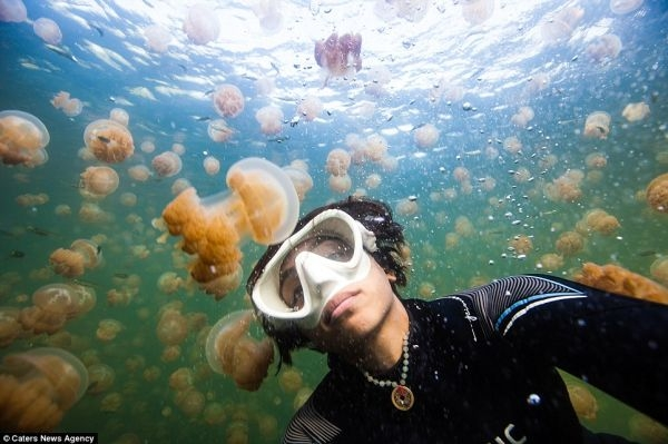 Khám phá đại dương bao la