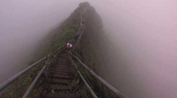 Nhóm nghiên cứu leo đến đỉnh vào khoảng 4h sáng khi sương mù vẫn còn che phủ cảnh vật xung quanh.