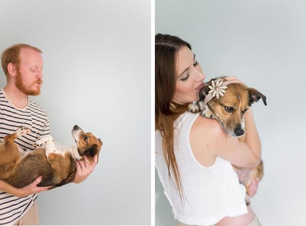 Dễ thương bộ ảnh chú chó được chụp như trẻ sơ sinh