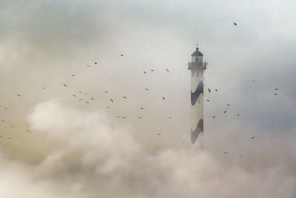 Nelle Lange, Ostend, Bỉ