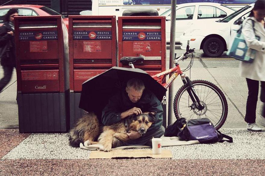 Một điều đáng ngạc nhiên là mặc dù những người vô gia cư có nghèo khổ và đói rét đến mức nào thì những chú chó vẫn được đối xử và chăm sóc khá tốt