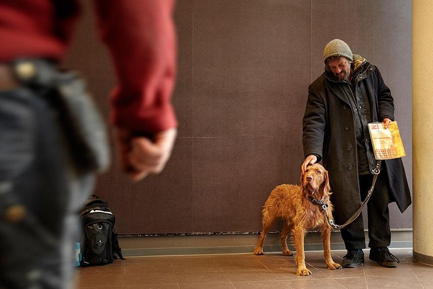 Những chú chó chính là những vệ sĩ đáng tin cậy, chúng sẽ sẵn sàng xả thân bảo vệ chủ.