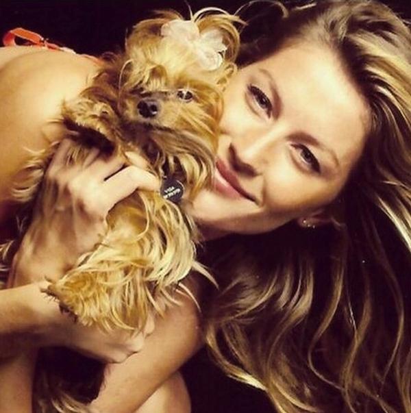 Ngược lại, trong lúc đó,Gisele lại tỏ ra thích thú với chú chó nhỏ của mình.