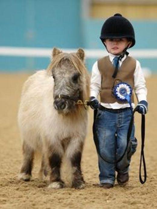 Kị sĩ cưỡi ngựa mini siêu đáng yêu