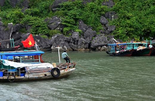 Ngư dân trong vịnh Hạ Long lo neo đậu thuyền tránh bão