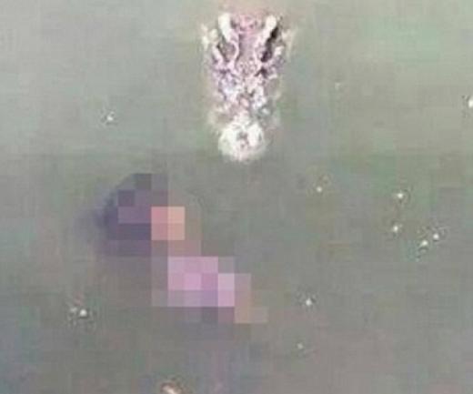 Nhảy xuống hồ có 1.000 con cá sấu để tự tử
