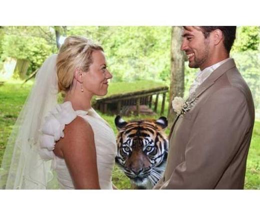 Tức điên với những bức ảnh cưới bị phá hoại siêu hài hước