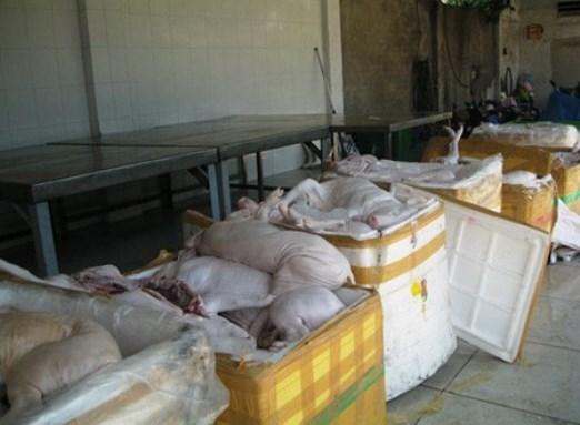 Giữa năm 2013, liên tiếp những vụ thịt heo sữa thối, nhiễm bệnh bị cơ quan chức năng phát hiện. Chỉ chưa đầy 2 tháng 6, 7, cơ quan chức năng đã phát hiện liên tiếp 4 vụ thịt heo sữa được di chuyển trên các xe tải tuồn vào TP.HCM. Ảnh: Khám phá.